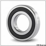 95 mm x 170 mm x 43 mm  SIGMA N 2219 cylindrical roller bearings